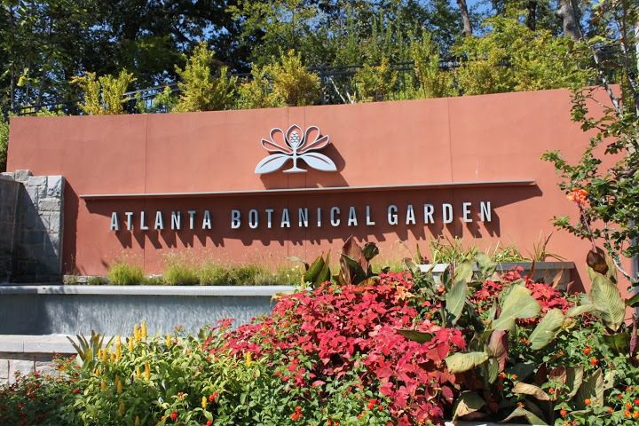 Visiting The Atlanta Botanical Gardens This Is My South