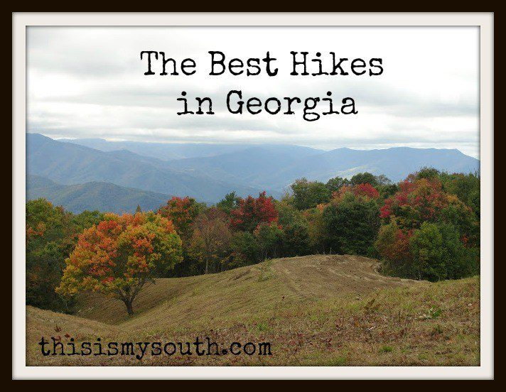Best Hikes In Georgia This Is My South
