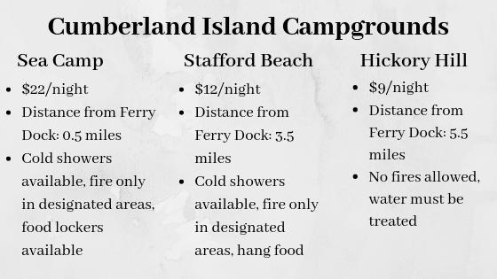 Cumberland Island Campgrounds